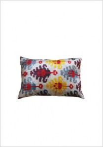 silk-velvet-cushion-v161